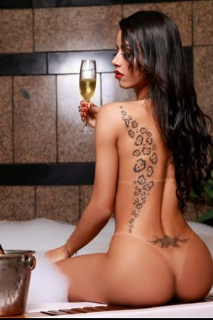 Tall Slender Party Transexual Escort