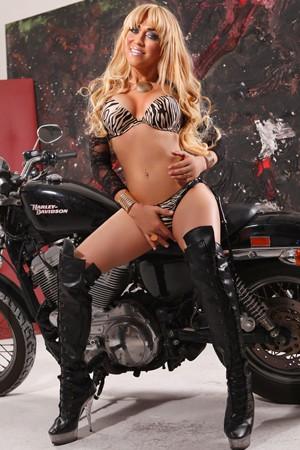 Transsexual London Shemale Escort TS Luma XXL