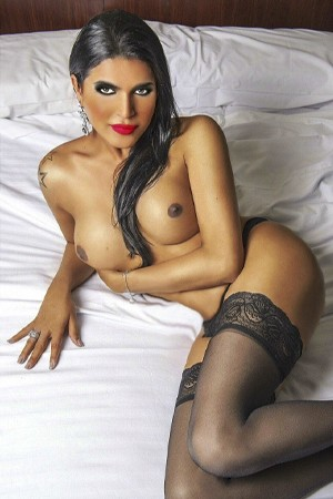 www.shemalelondonescorts.co.uk